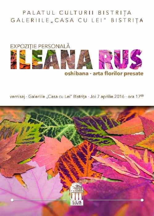 Expozitie persoanala Ileana Rus - Joi, 7 Aprilie 2016, ora 17.00 - Casa cu Lei