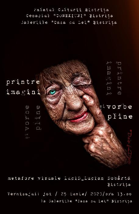 """Expoziția """"Metafore vizuale"""" - Lucian Dobârtă, joi - 25 iunie 2020, ora 13.00 - Galeriile """"Casa cu Lei"""""""